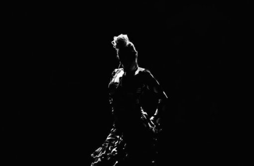 flamenco sevlla