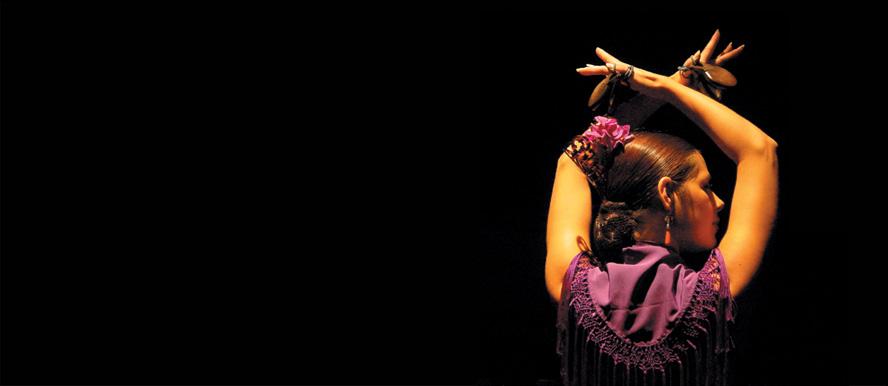 Espect culo flamenco en sevilla andaluc a experiencias for Espectaculos en sevilla
