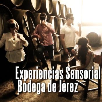 EXPERIENCIA SENSORIAL EN BODEGA DE JEREZ