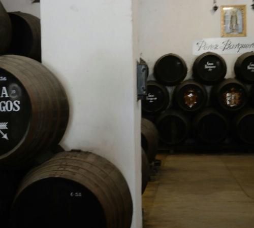 Jerez 1