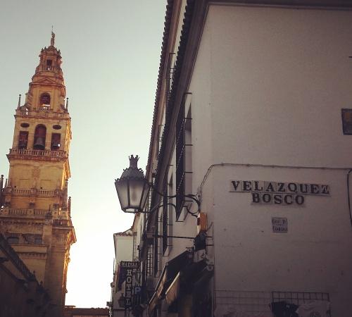 Tejados de Córdoba 3