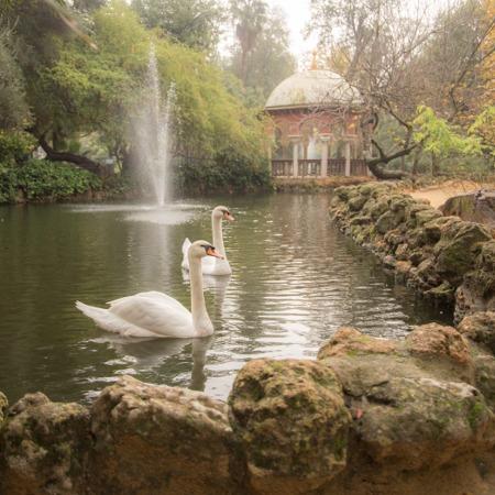 Jardines de Sevilla2