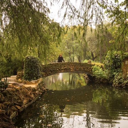 Jardines de Sevilla4